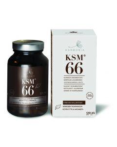 Harmonia KSM66